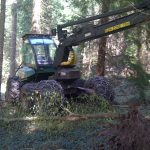 The driving seat of a forestry machine...