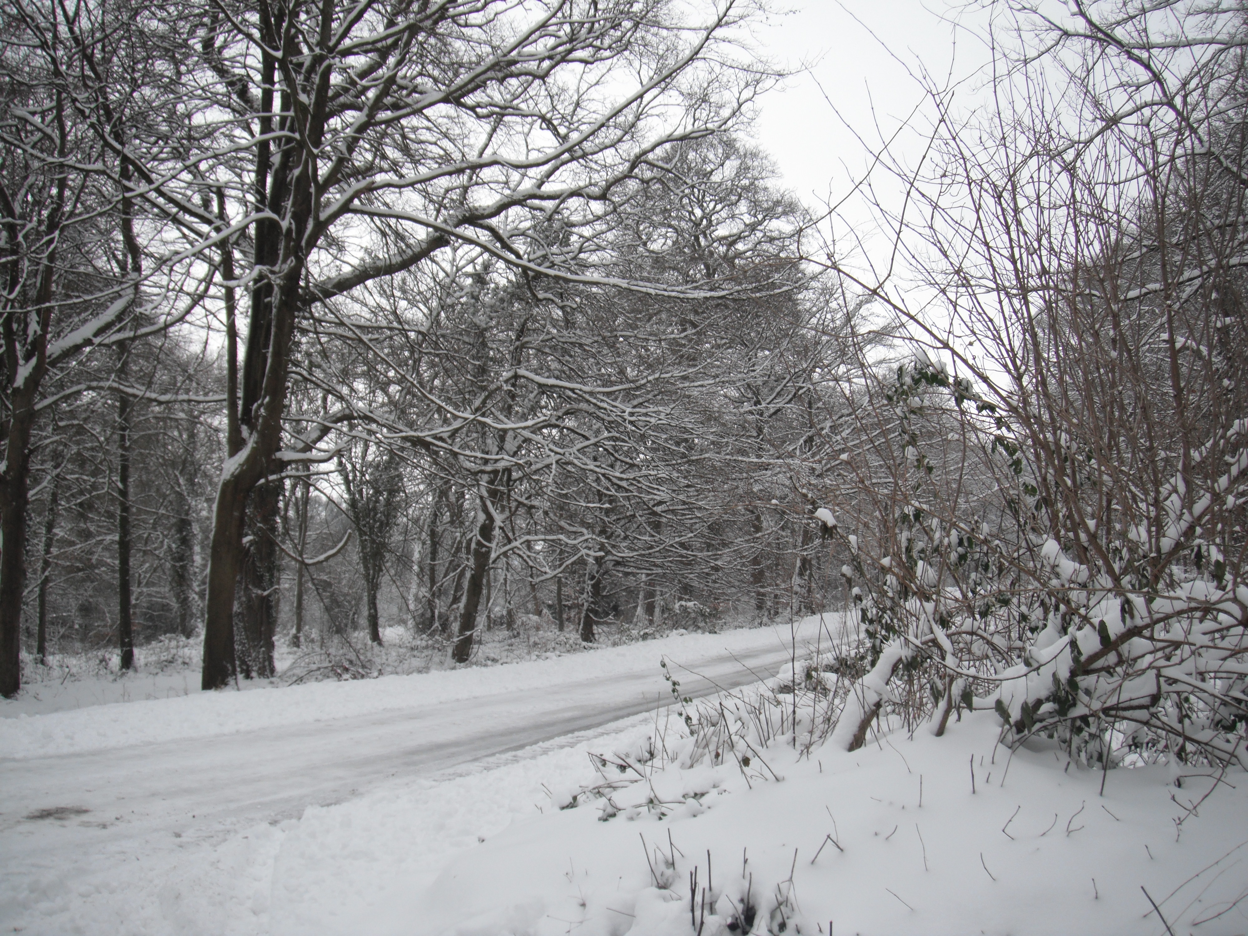 The road to Lea Bailey in the snow