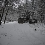 Looking towards the shed; track hidden by snow